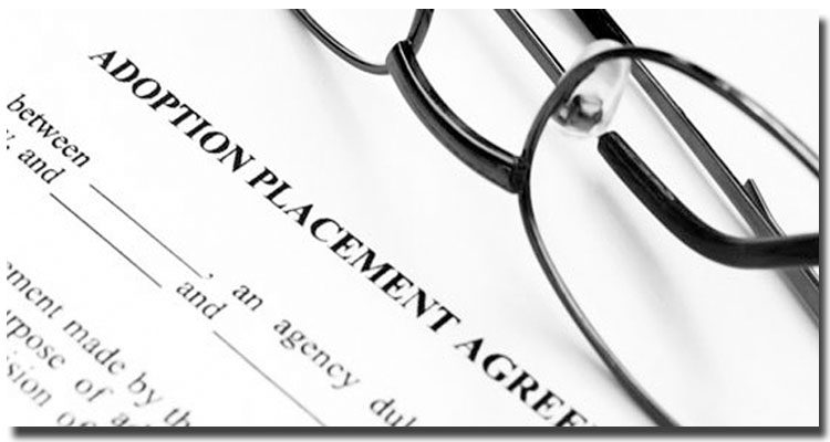 Types of Schools With ABA-Approved Paralegal Programs
